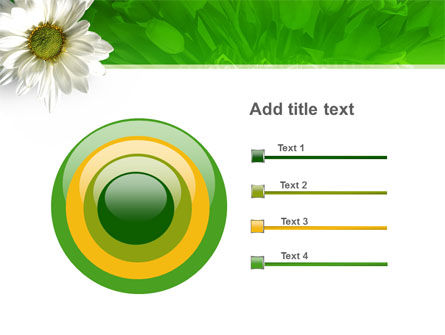 Ox-eye Daisy PowerPoint Template Slide 9