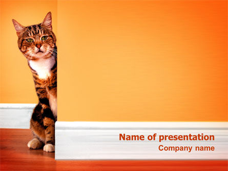 Curious Cat Powerpoint Template Backgrounds 02560