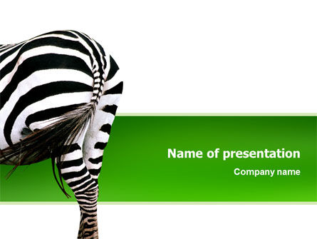 Zebra PowerPoint Template, 02564, Animals and Pets — PoweredTemplate.com