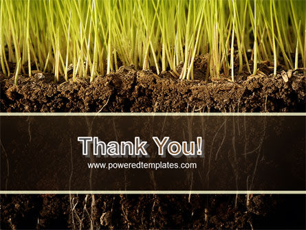 Soil PowerPoint Template Slide 20