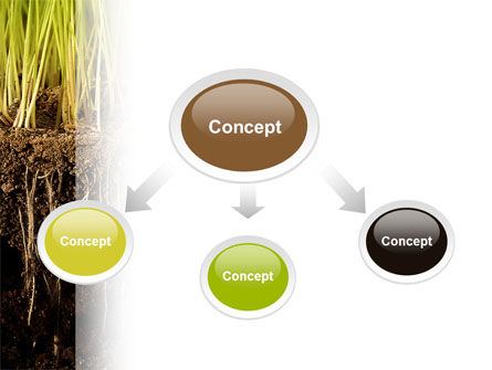 Soil powerpoint template backgrounds 02607 poweredtemplate soil powerpoint template slide 4 02607 nature environment poweredtemplate toneelgroepblik