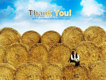 Rolls Of Hay PowerPoint Template Slide 20