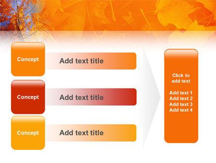 Autumn Woods PowerPoint Template Slide 12