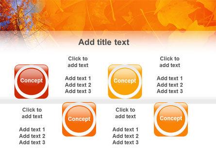 Autumn Woods PowerPoint Template Slide 19