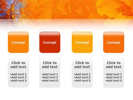 Autumn Woods PowerPoint Template Slide 5