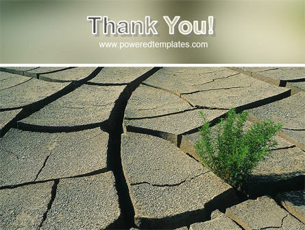 Drought PowerPoint Template Slide 20