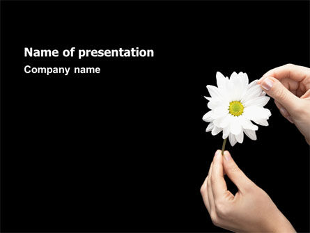 Chamomile PowerPoint Template, 02651, Religious/Spiritual — PoweredTemplate.com