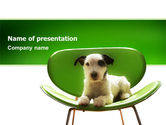 Animals and Pets: Puppy PowerPoint Template #02658