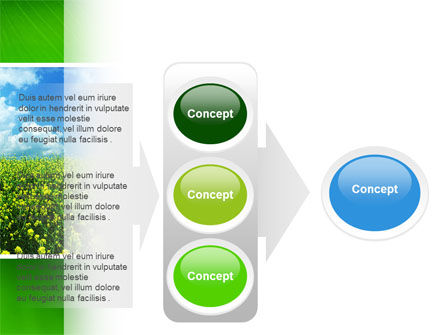 Green Field In A Sunny Day PowerPoint Template Slide 11