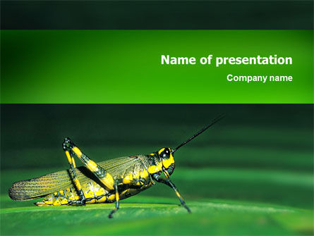 Animals and Pets: Grasshopper PowerPoint Template #02690