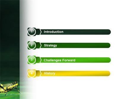 Grasshopper PowerPoint Template, Slide 3, 02690, Animals and Pets — PoweredTemplate.com