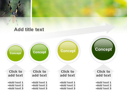 Spider PowerPoint Template Slide 13