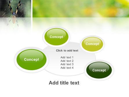 Spider PowerPoint Template Slide 16
