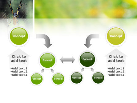 Spider PowerPoint Template Slide 19
