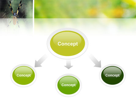 Spider PowerPoint Template Slide 4