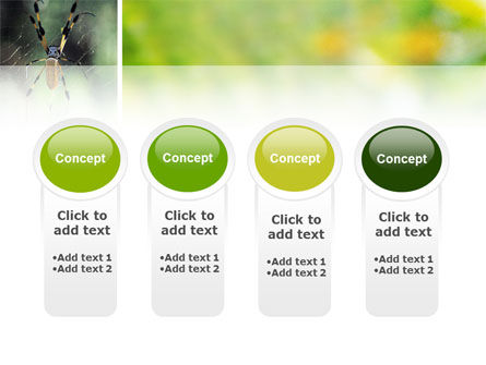 Spider PowerPoint Template Slide 5