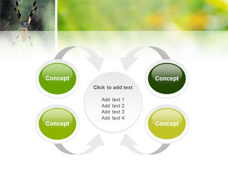 Spider PowerPoint Template Slide 6