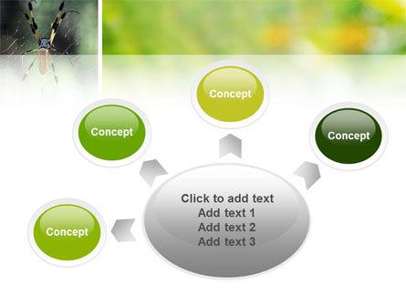 Spider PowerPoint Template Slide 7