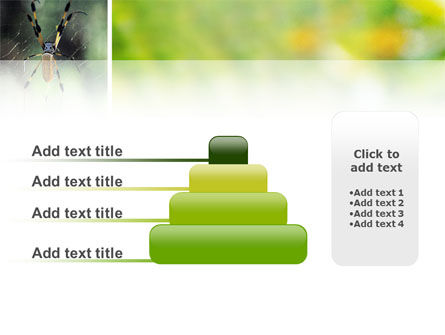 Spider PowerPoint Template Slide 8