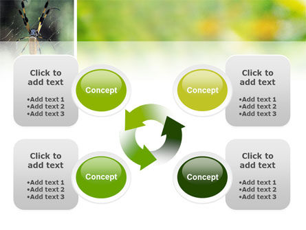 Spider PowerPoint Template Slide 9