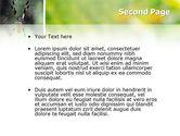 Spider PowerPoint Template#2