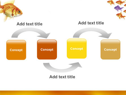 Goldfish PowerPoint Template, Slide 4, 02710, Nature & Environment — PoweredTemplate.com