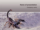 Animals and Pets: Modello PowerPoint - Scorpione #02713