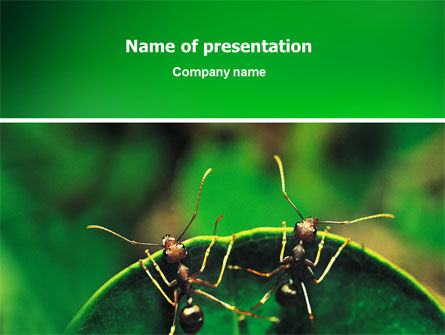 Nature & Environment: Mieren PowerPoint Template #02718