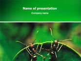 Nature & Environment: Ants PowerPoint Template #02718