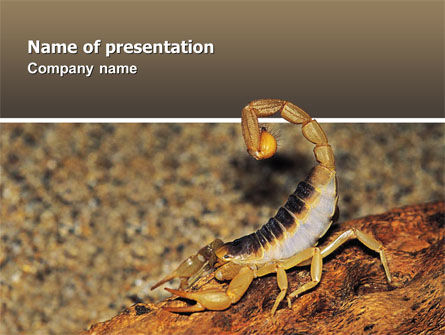 Animals and Pets: Desert Hairy Scorpion PowerPoint Template #02731