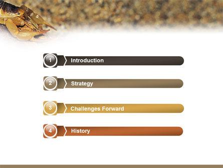Desert Hairy Scorpion PowerPoint Template, Slide 3, 02731, Animals and Pets — PoweredTemplate.com