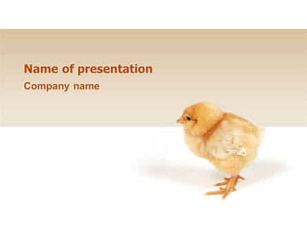 Agriculture: Chicken PowerPoint Template #02737