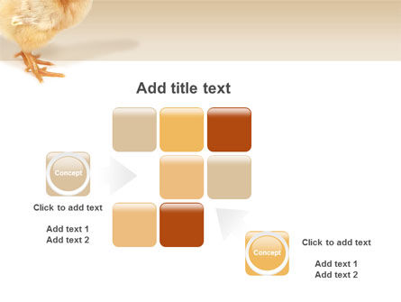 Chicken PowerPoint Template Slide 16