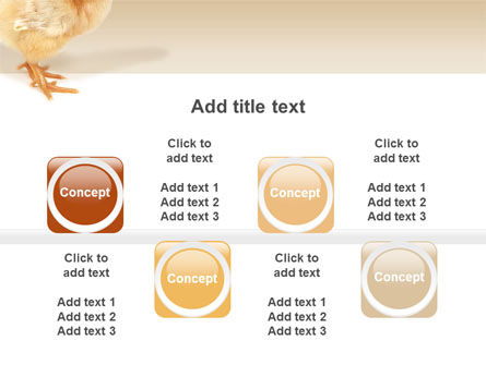 Chicken PowerPoint Template Slide 19