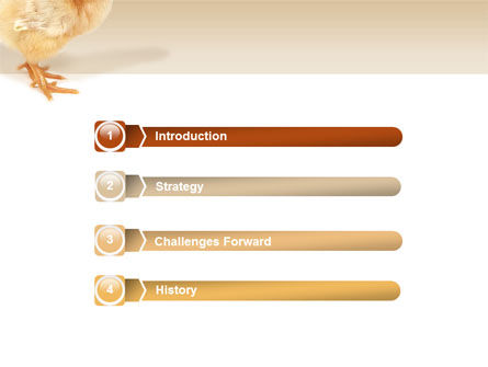 Chicken PowerPoint Template Slide 3