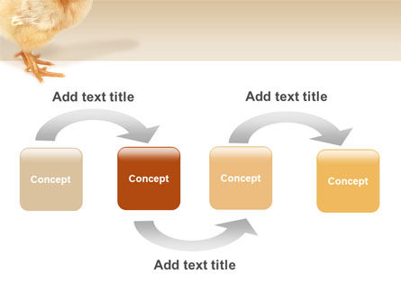 Chicken PowerPoint Template Slide 4