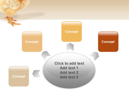 Chicken PowerPoint Template Slide 7