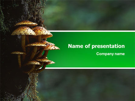 Fungi In The forest PowerPoint Template, 02756, Nature & Environment — PoweredTemplate.com