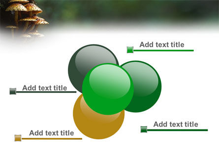 Fungi In The forest PowerPoint Template Slide 10