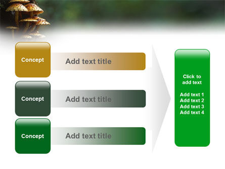 Fungi In The forest PowerPoint Template Slide 12