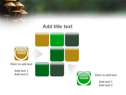 Fungi In The forest PowerPoint Template Slide 16