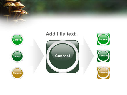 Fungi In The forest PowerPoint Template Slide 17