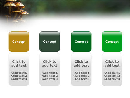 Fungi In The forest PowerPoint Template Slide 5