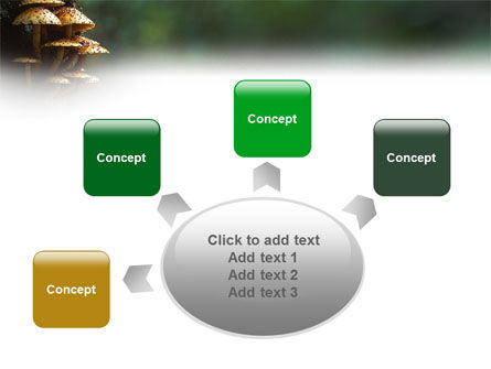 Fungi In The forest PowerPoint Template Slide 7