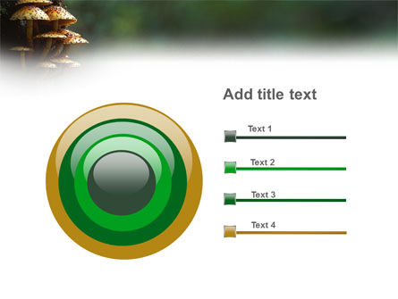 Fungi In The forest PowerPoint Template Slide 9