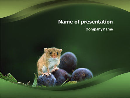 Gnawer PowerPoint Template