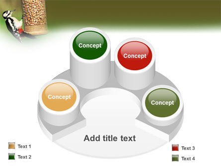 Birdfeeder PowerPoint Template Slide 12