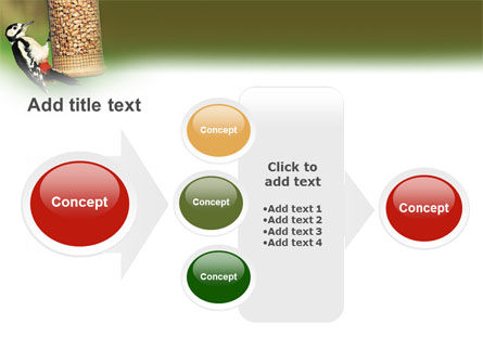 Birdfeeder PowerPoint Template Slide 17
