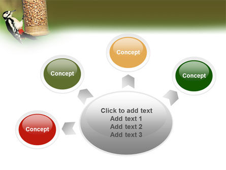 Birdfeeder PowerPoint Template Slide 7