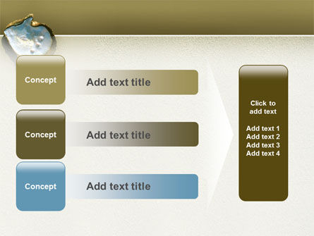 Pearls and Shell PowerPoint Template Slide 12
